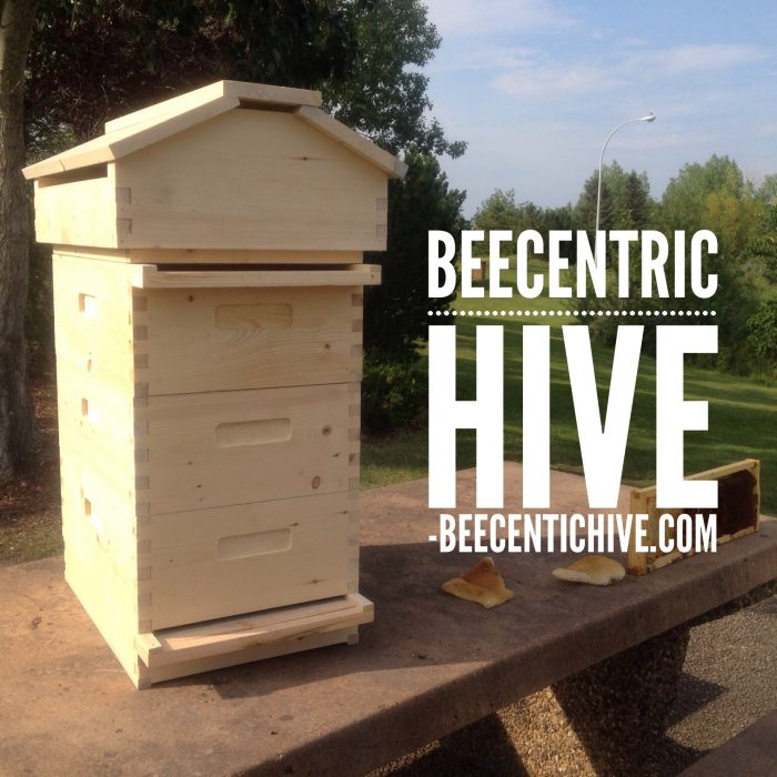 FAQ Frequently Asked Questions about the Beecentric Hive