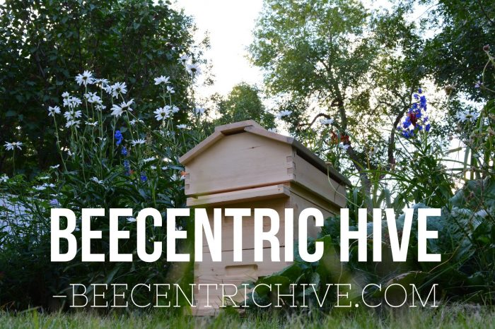 Order a Beecentric Hive. 8 frame Warre Hive, Langstroth Hive hybrid.