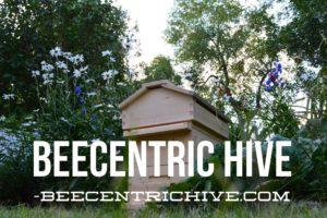 Beecentric Hive. Edmonton, Alberta. Beekeeping Equipment.