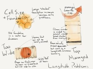 Common Design Flaws of Langstroth Hives